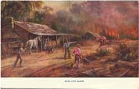 Post Card - Bush Fire Alarm